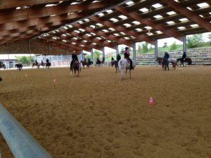 Så mycket hästar på framridningen