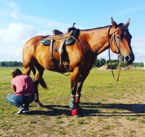 Success med sin hästskötare efter en uppvisning 2016.